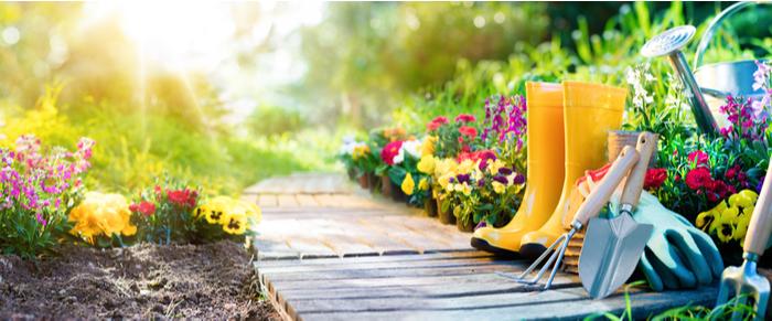 Acxiom Zielgruppe des Monats – Garten & DIY